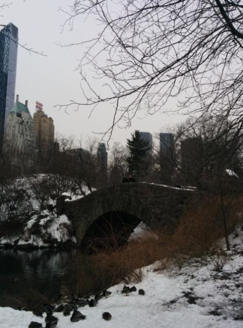 Central Park puente
