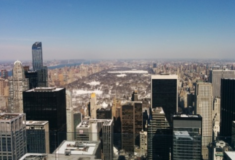 Top of the Rock Central Park